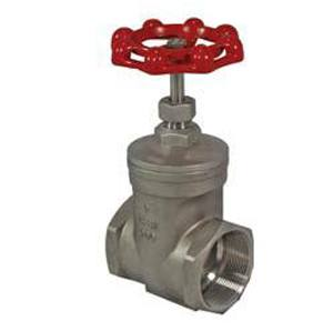 GATE VALVE 316 200PSI BSP
