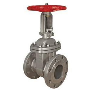 STAINLESS STEEL GATE VALVE OS&Y FLANGED CLASS 150